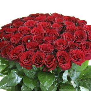 Букет красных роз 51 штука