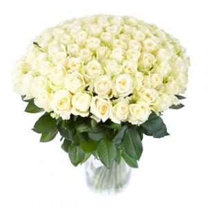 101 белая роза, букет купить