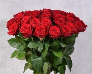 Букет 25 красных роз купить