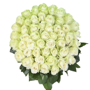 Букет белых роз 51 штука
