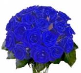 Синие розы купить: