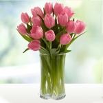Розовые тюльпаны купить: