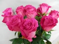 Розовая роза Топаз, купить: