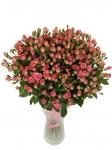 """Кустовая роза """"Грация"""" купить:"""