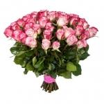 Двухцветная роза Карусель, купить: