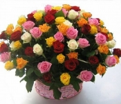 Праздничная феерия. Букет из 51 розы МИКС